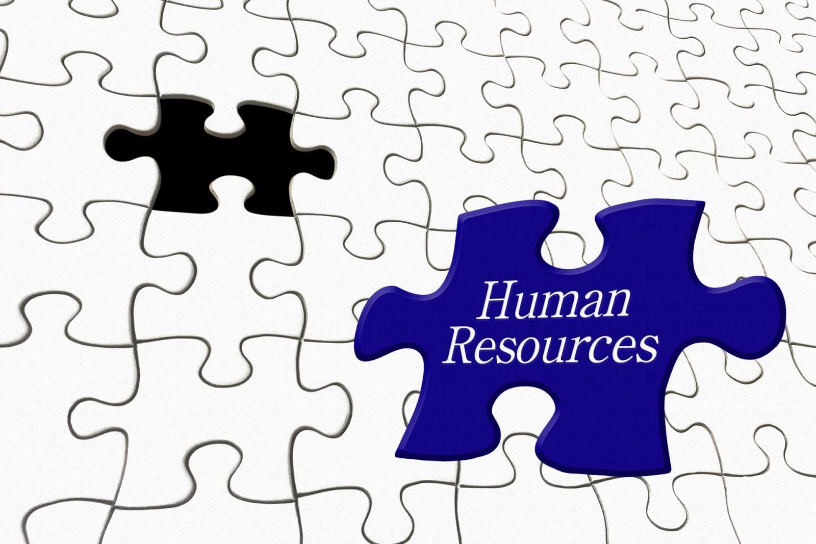 人的資源管理(HRM)とは?企業をより成長させるための仕組みを考える